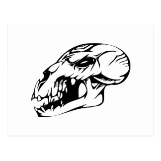 Cráneo animal tarjeta postal