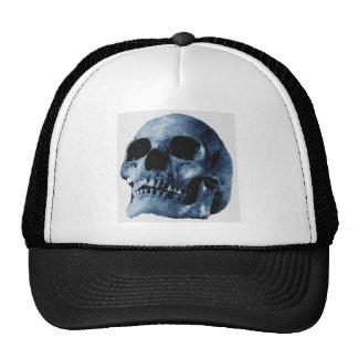 Cráneo azul gorro de camionero