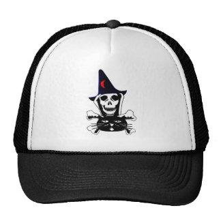 Cráneo, bandera pirata, y gato gorros