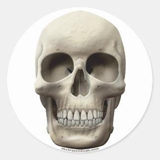 Cráneo básico pegatina redonda