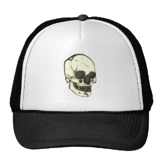 Cráneo calavera skull gorros