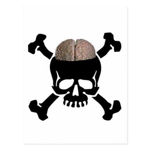 Cráneo con los cerebros tarjeta postal