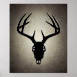 Cráneo de la caza de los ciervos con las astas impresiones