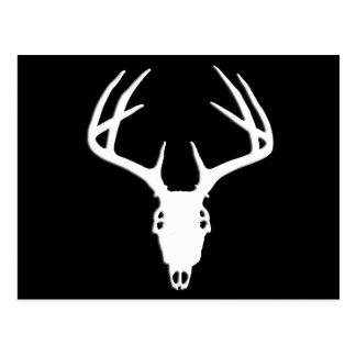 Cráneo de la caza de los ciervos con las astas tarjetas postales