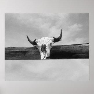 Cráneo de la vaca blanco y negro póster