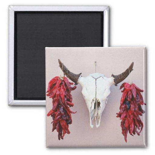 Cráneo de la vaca de Santa Fe con pimientas Imán Cuadrado