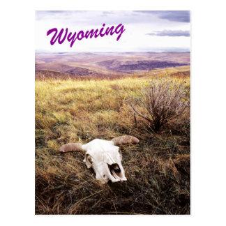 Cráneo de la vaca en Wyoming rural Postal