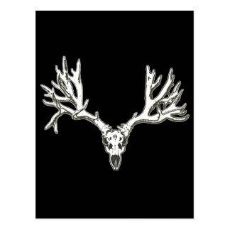 Cráneo de los ciervos del dólar del monstruo postales