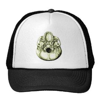 Cráneo debajo del bronce gorras de camionero