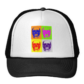 Cráneo del arte pop gorros bordados