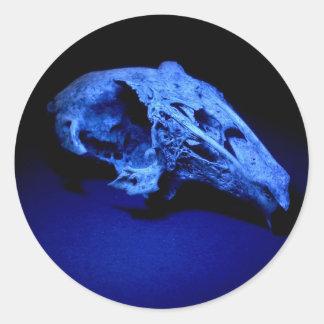Cráneo del conejo - sistema de 20 pegatinas pegatina redonda