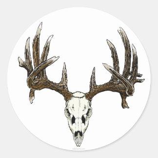 Cráneo del dólar del Whitetail Pegatina Redonda