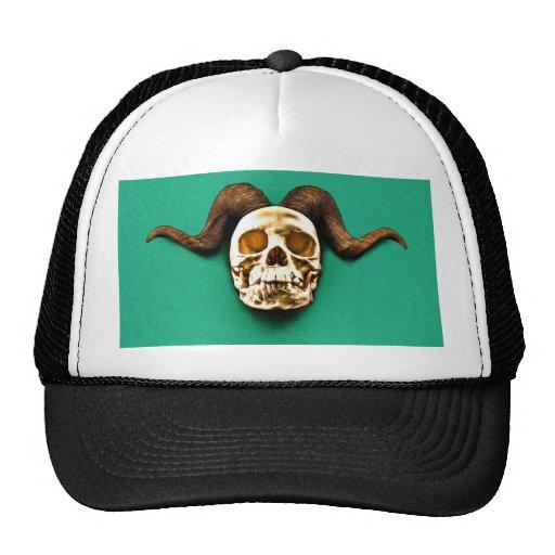 Cráneo del espolón gorros bordados