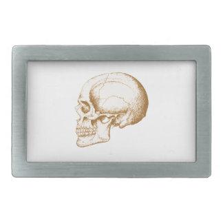 Cráneo del ser humano de la sepia hebillas de cinturón rectangulares