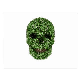 Cráneo del trébol postal