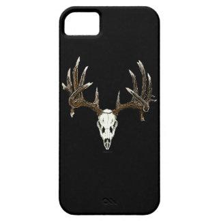 Cráneo del venado de cola blanca iPhone 5 carcasas