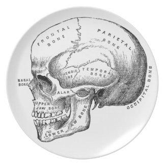 Cráneo del vintage plato de comida