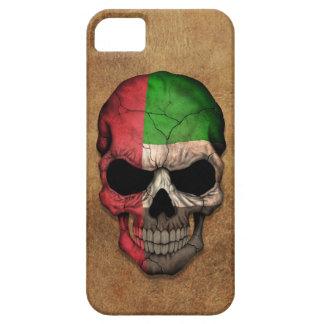 Cráneo envejecido y llevado de la bandera de Unite iPhone 5 Case-Mate Protectores