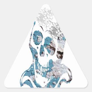 Cráneo erosionado con turquesa pegatina triangular
