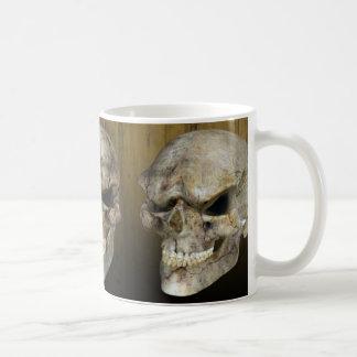 Cráneo extranjero antiguo taza