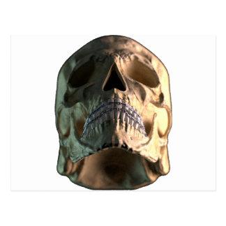 Cráneo - frente - ángulo bajo postal