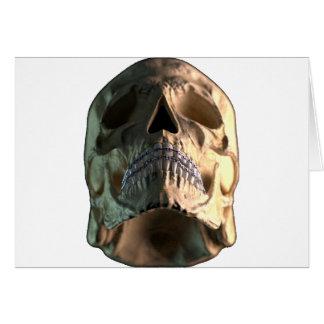 Cráneo - frente - ángulo bajo tarjetas