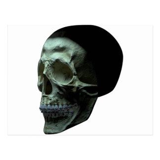 Cráneo - frente - ángulo de tres cuartos postales