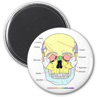 Cráneo (frente) imán redondo 5 cm