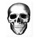 Cráneo Halloween espeluznante asustadizo principal Postales