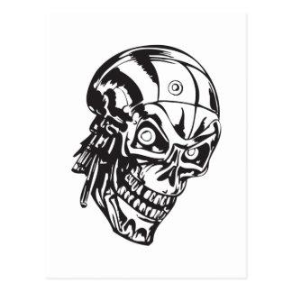 Cráneo humano 146 tarjetas postales