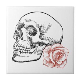 Cráneo humano con el dibujo lineal del rosa rojo teja cerámica