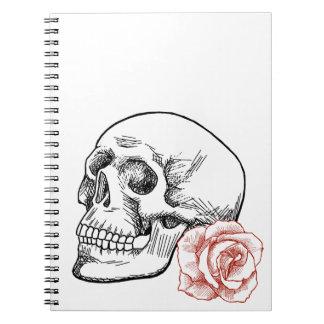Cráneo humano con el dibujo lineal del rosa rojo libro de apuntes
