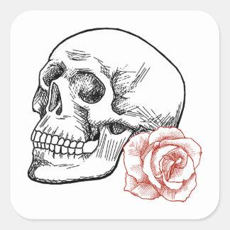 Cráneo humano con el dibujo lineal del rosa rojo pegatina cuadradas