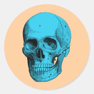 Cráneo humano de la anatomía pegatina redonda