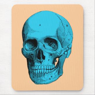 Cráneo humano de la anatomía tapete de raton