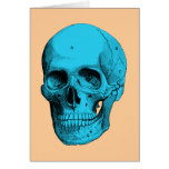 Cráneo humano de la anatomía tarjetón