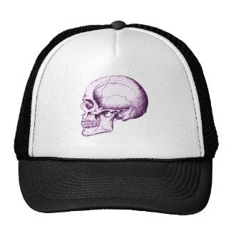 Cráneo humano púrpura gorros