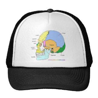 Cráneo (lateral) gorras de camionero