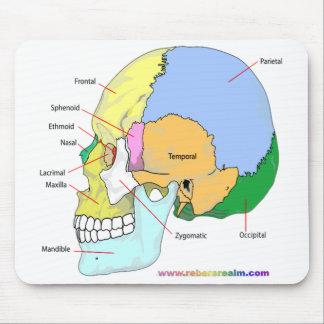 Cráneo (lateral) alfombrilla de raton