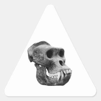 Cráneo los gorilas pegatina triangular