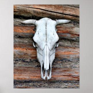 Cráneo montado de la vaca póster