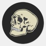 Cráneo Pegatinas Redondas