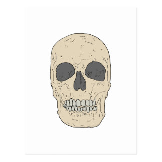 cráneo polvoriento tarjetas postales