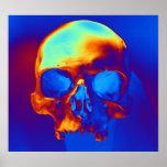 Cráneo Poster