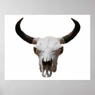 Cráneo Póster