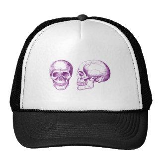 Cráneo púrpura del ser humano de la parte gorros