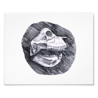 Cráneo que dibuja bosquejo animal imaginario fotografías