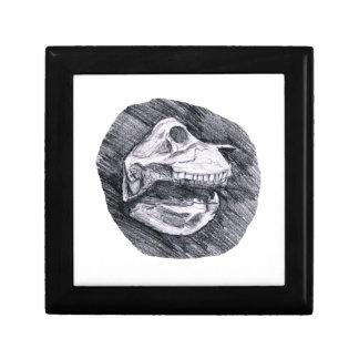 Cráneo que dibuja bosquejo animal imaginario joyero cuadrado pequeño
