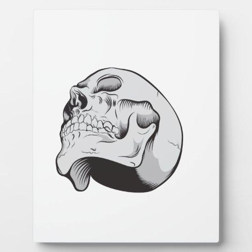 Cráneo que mira para arriba placas de plastico