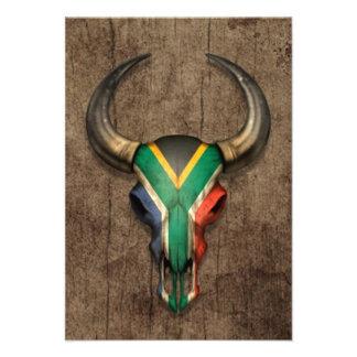 Cráneo surafricano de Bull de la bandera en el efe Comunicado Personal